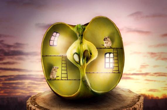 Photo Manipulate a Surreal Apple Habitat Scene
