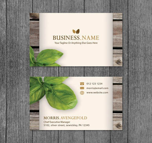 Business Card Designs Collection- 10