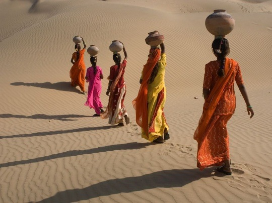 Desert Crossing, Rajasthan, India by Shivji Joshi