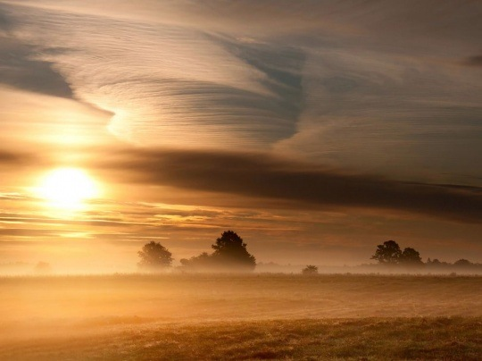Morning Landscape, Lithuania by Eugenijus Rauduve