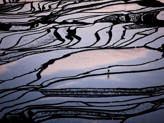 Rice Terraces, China by Byongsun Ahn