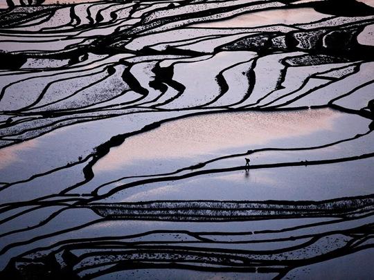 Rice Terraces, China by Byongsun Ahn