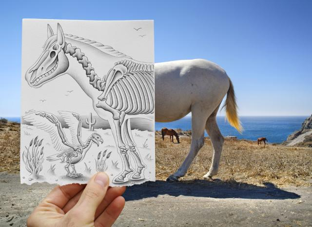 Pencil Vs Camera - 40 by Ben Heine