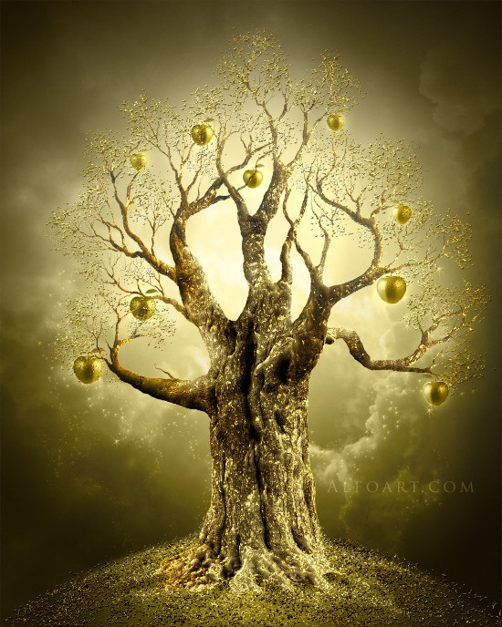 Golden Apple Tree.