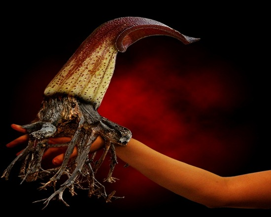 How To Create A Fantasy Flower Creature
