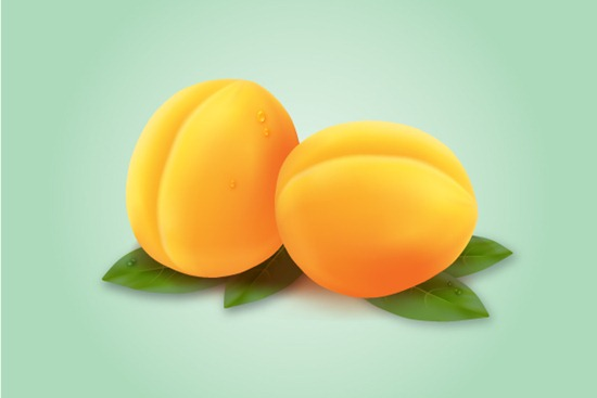 How to Draw an Apricot with the Mesh Tool