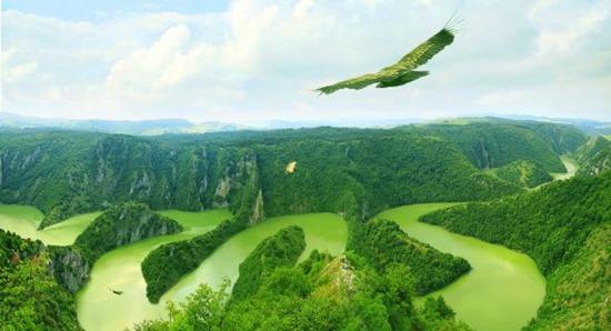 eagles-landscape