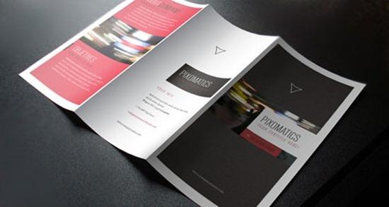 Brochure-4