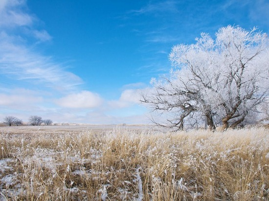 Snowfall, Wyoming