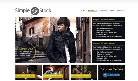 simplestock-30