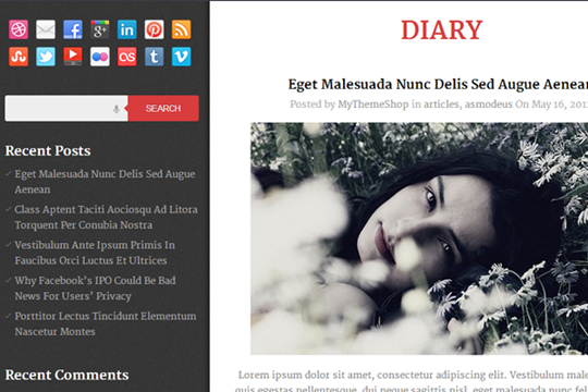Diary-free-wordpress-theme-2012