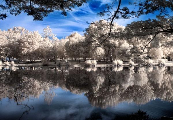Reflection Photography 16