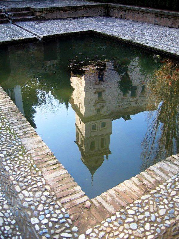 Reflection Photography 5