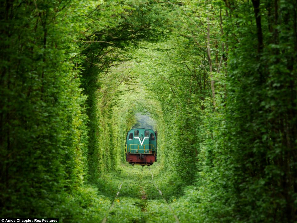Tunnel Of Love Image 1