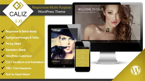 Caliz-Wordpress-Theme