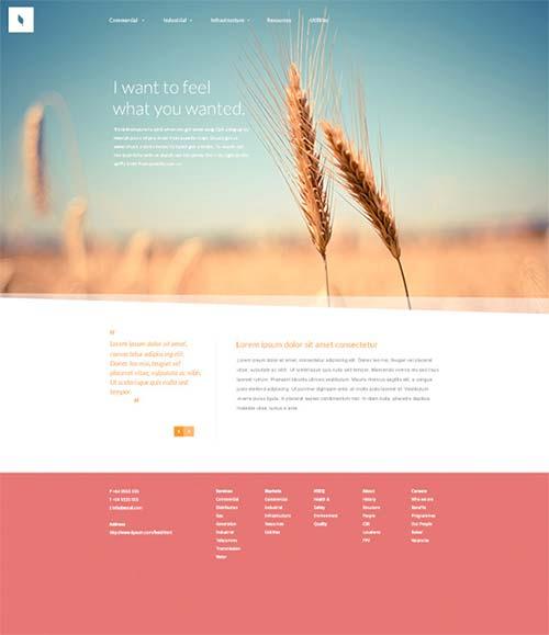 Organic-Free-Website-PSD-Template-by-Blaz-Robar