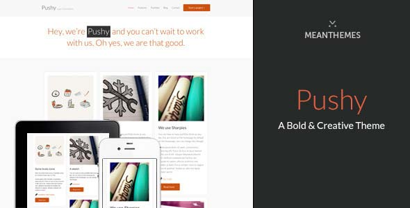 Pushy-A-Bold-&-Creative-Marketing-WP-theme
