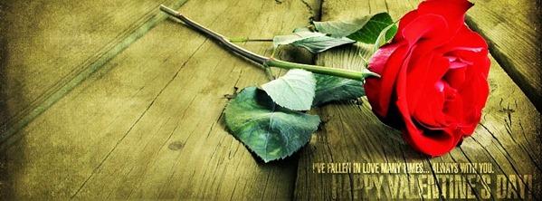 valentine facebook cover 13