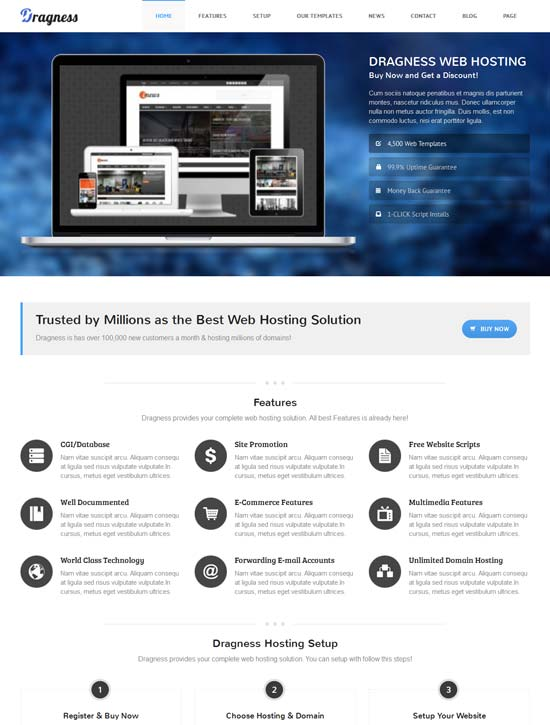 Dragness-Premium-Hosting-WordPress-Landing-Page