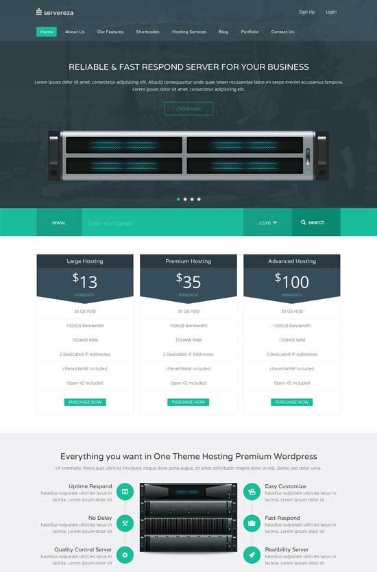 Servereza-Responsive-Hosting-WP-Theme