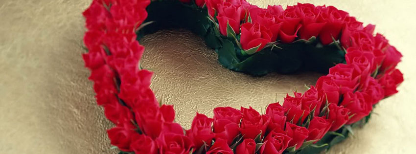 Rose-Flowers-for-Valentines-day-2016-cover-photo
